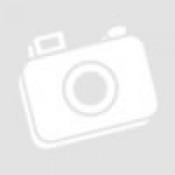 Munkaasztal fa lappal 5 db fiók + 2 polc 1372x508x865 mm (SEN-405-5050K)